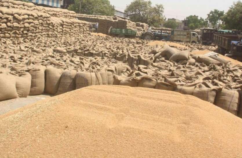 गेहूं खरीदी के लिए पंजीयन में किसानों ने नहीं दिखाई रुचि