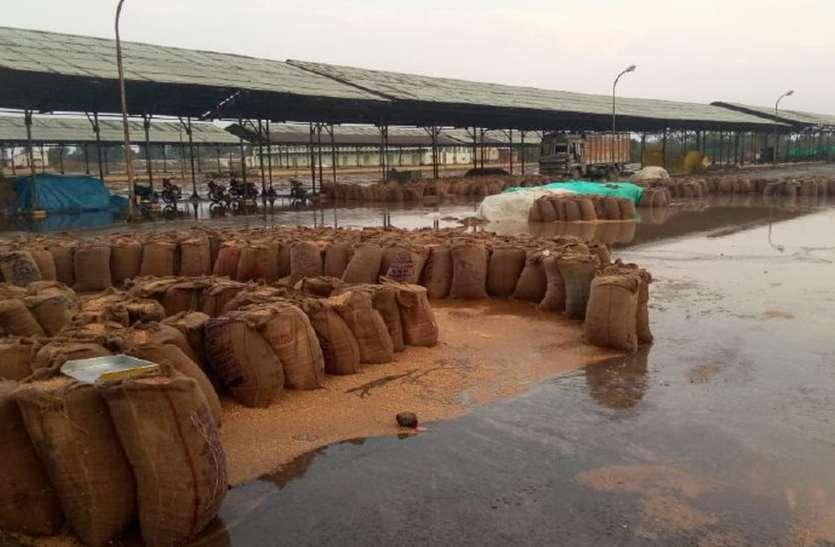 तेज हवा के साथ बारिश, ओलावृष्टि से फसलों को नुकसान
