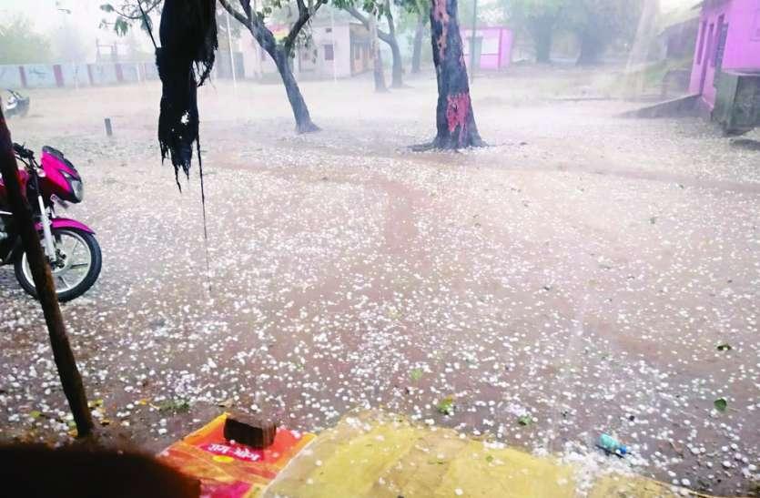 बेमौसम बारिश ने बढ़ाई किसानों की मुसीबत, कई जगह फसलें तबाह