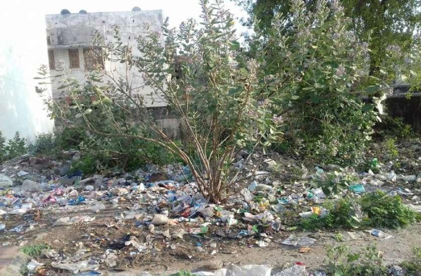 कोरोना का असर-नहीं हुआ नगर से कचरे का उठाव