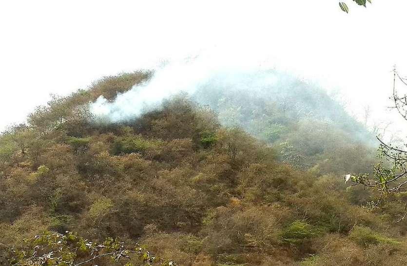मेघजीन घाटी में दो दिन से जल रही आग
