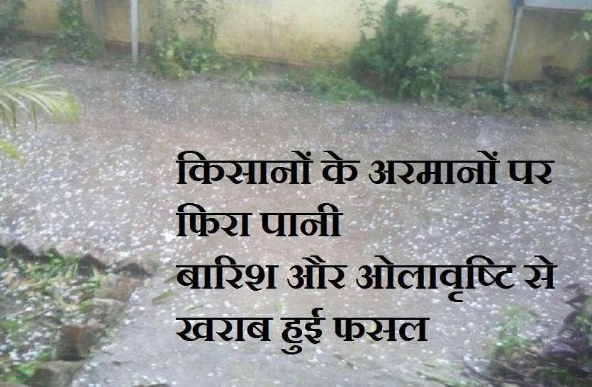 किसानों के अरमानों पर फिरा पानी,बारिश और ओलावृष्टि से फसलों को हुआ नुकसान