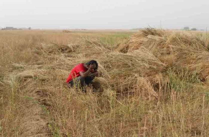 कोरोना की वजह से किसानों को पड़ रही है दोहरी मार, पहले ओलावृष्टि ने रुलाया, अब बची-कुछ फसलों को नहीं मिल रहा दाम