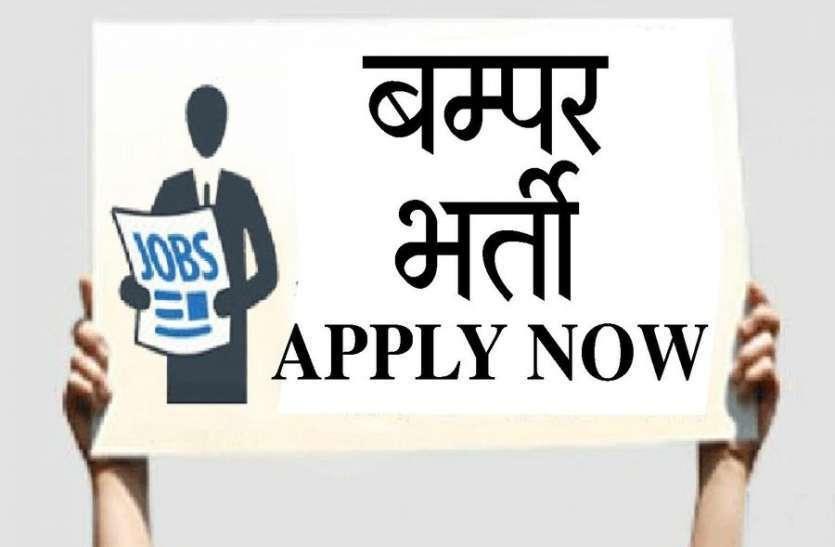 #Govt_Jobs 2020: जिला स्तर पर 166 पदों की निकली सीधी भर्ती, नहीं देनी होगी कोई एग्जाम, जानें डिटेल्स