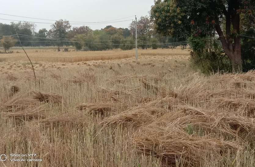 बूंदाबादी से किसानों के चेहरों पर चिंता की लकीर