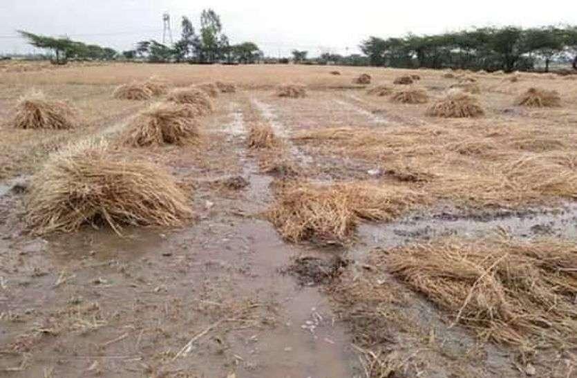 कोरोना के साथ कुदरत के कहर ने किया किसानों को बर्बाद