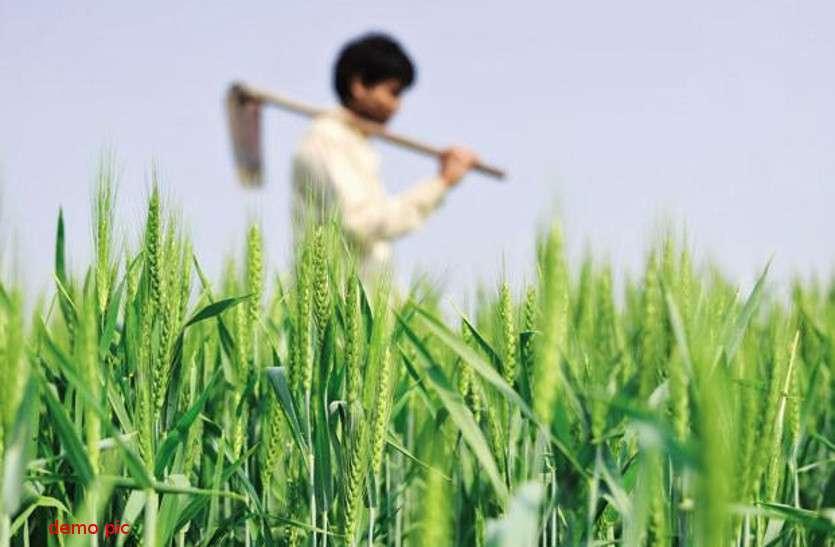Coronavirus : किसानों को बड़ी राहत, 30 जून तक जमा होंगे खरीफ के फसली ऋण