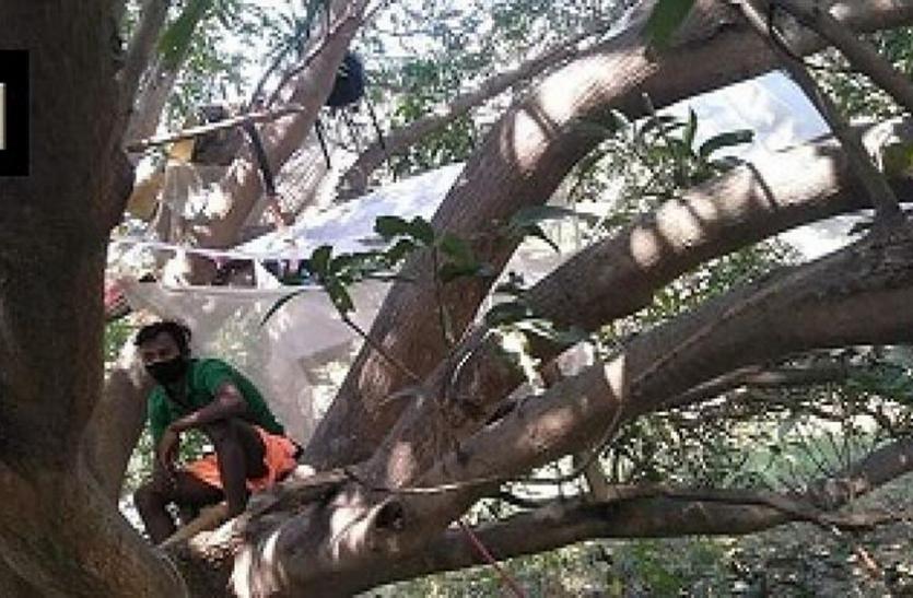 कोरोना के डर से गांव वालों ने लगाया 'नो एंट्री' का बोर्ड, लोगों ने खुद को पेड़ पर किया क्वारंटाइन