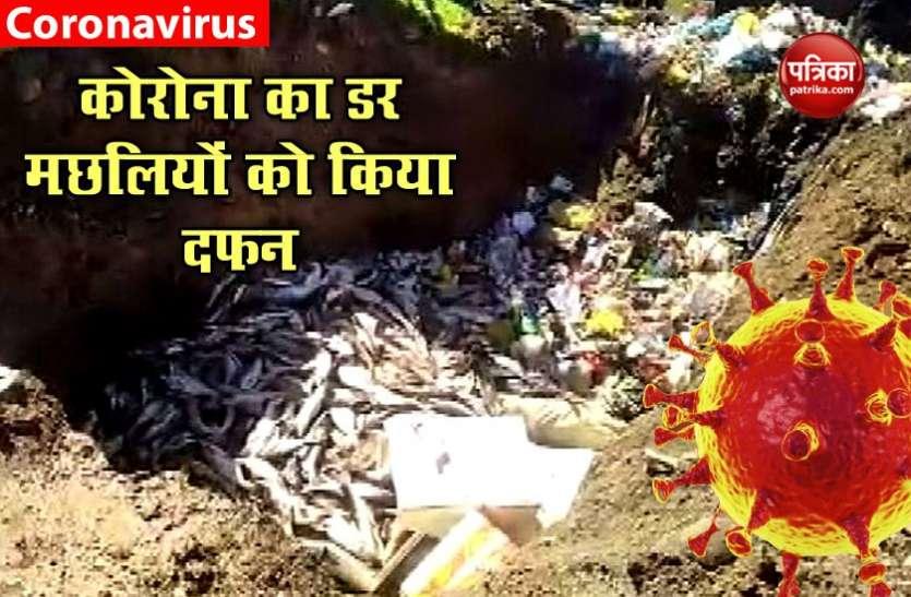 कोरोना वायरस : मुर्गों के बाद अब मछलियों की बारी, हजारों क्विंटल को जमीन में गाड़ा