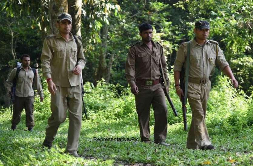 Forest Guard Recruitment 2020: वन रक्षक भर्ती का नोटिफिकेशन जारी, 12वीं पास जल्द करें अप्लाई