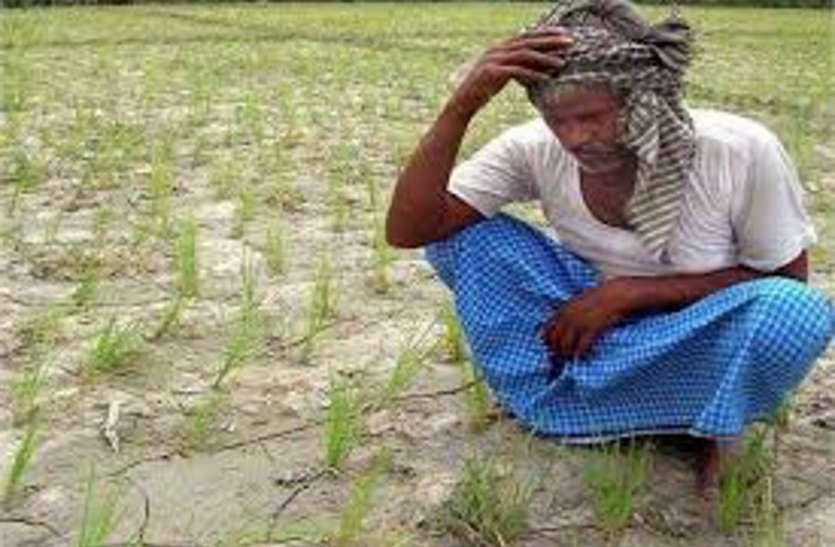 किसानों को बड़ा झटका, इन जिलों में समर्थन मूल्य पर खरीदी हुई स्थगित