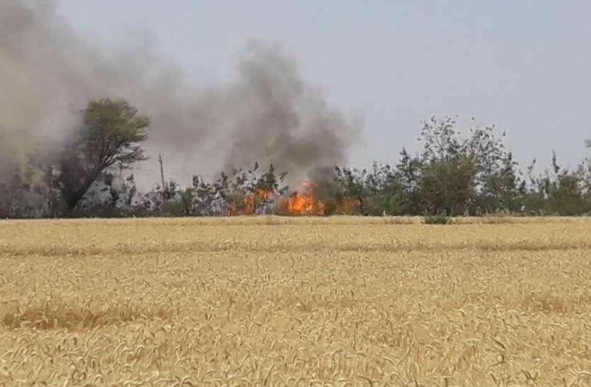 रैसलपुर में पैतीस एकड़ गेहूं की खड़ी फसल जली