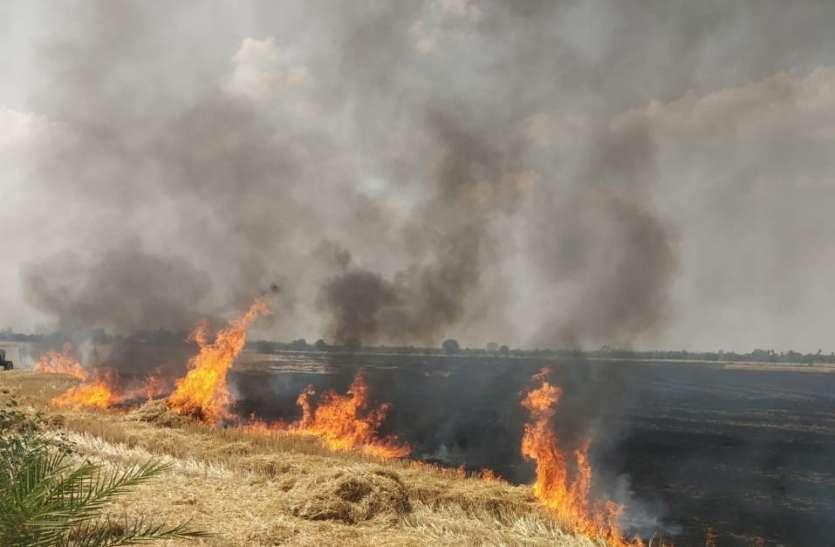 आग लगने से किसानों का लाखों का नुकसान, बाल-बाल बचा गांव