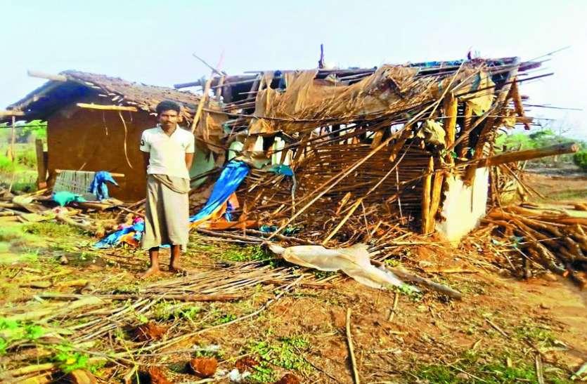 अमलोर में हाथियों ने मचाया भारी उत्पात, कच्चे मकानों को तोड़ा, सब्जी बाड़ी को रौंदा