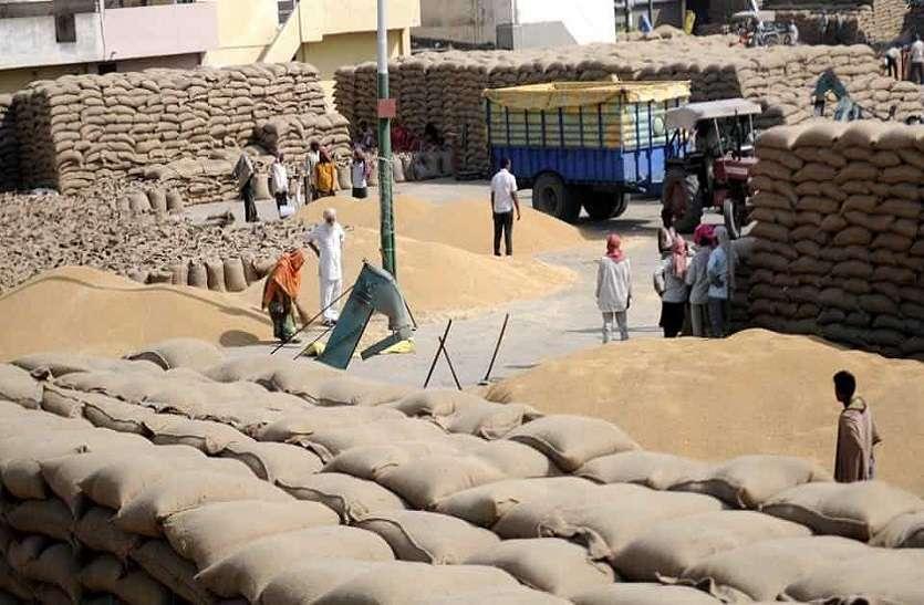 केन्द्रों पर बगैर ढेर लगाए सीधे बोरियों में भर रहे गेहूं, अन्नदाता को मैसेज का इंजतार