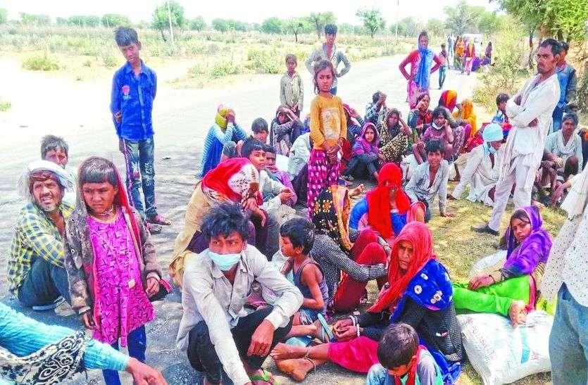 82 मजदूरों को दो ट्रकों में मवेशियों की तरह भरकर सीकर की सीमा के वीरान जोहड़ में छोड़ गई जयपुर पुलिस!
