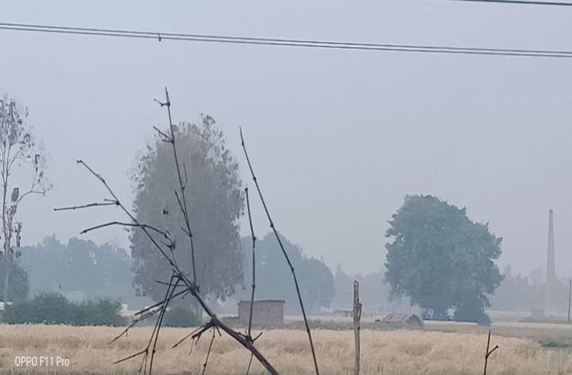 बेमौसम बारिश से हफ्ते भर तक गेहूं कटाई और मड़ाई का काम रुका, अगले 24 घंटों के लिए मौसम विभाग ने जारी की चेतावनी