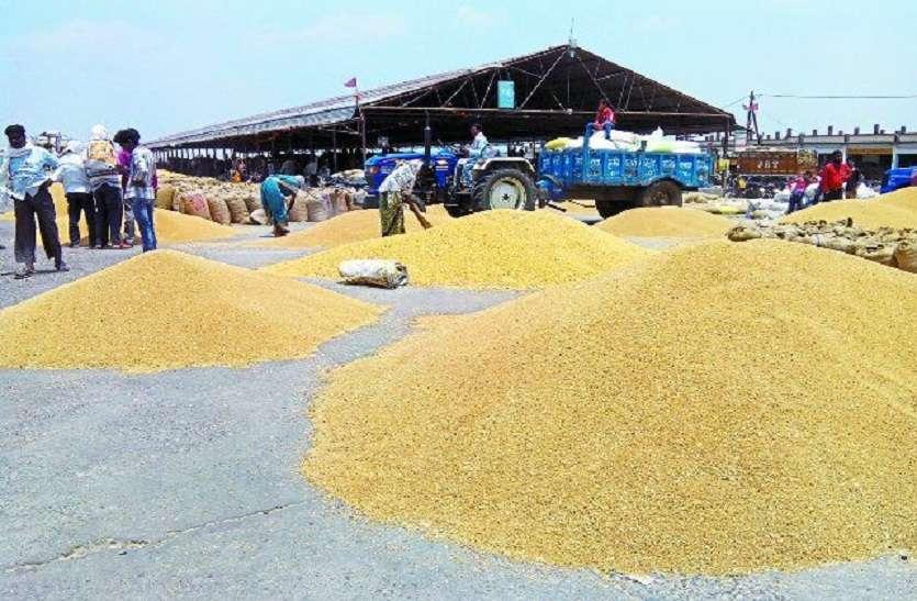 एसएमएस भेजकर गेहूं खरीदी हो रही है किसानों से