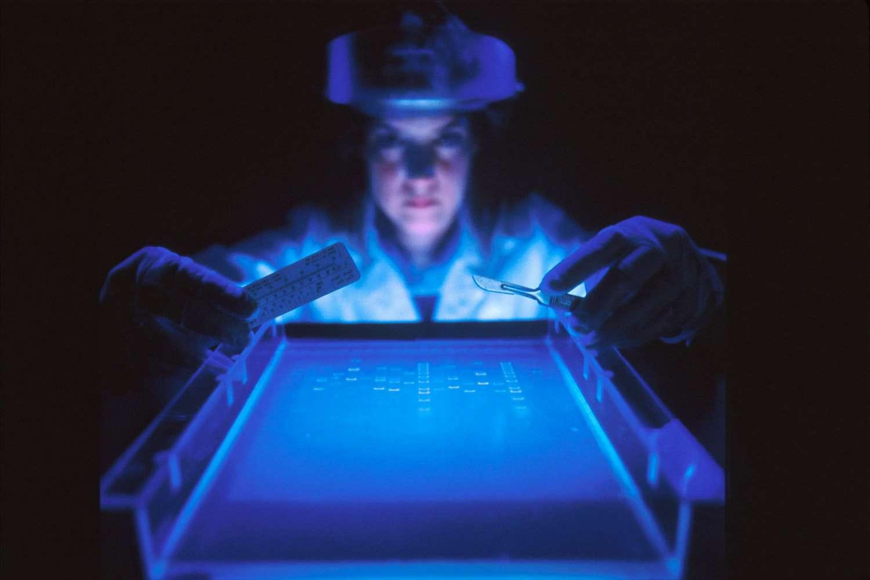 बेनवॉलेंट आर्टिफिशियल इंटेलिजेंस ने जिस संभावित उपचार की खोज की वह परीक्षण चरण में