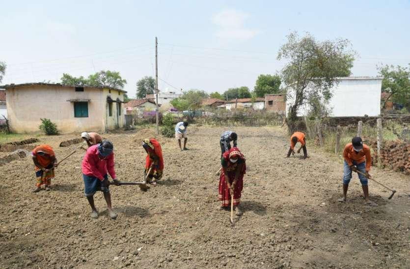 बिल्हा जनपद पंचायत के 90 पंचायतों में 47 सौ मजदूर मनरेगा में कर रहे काम
