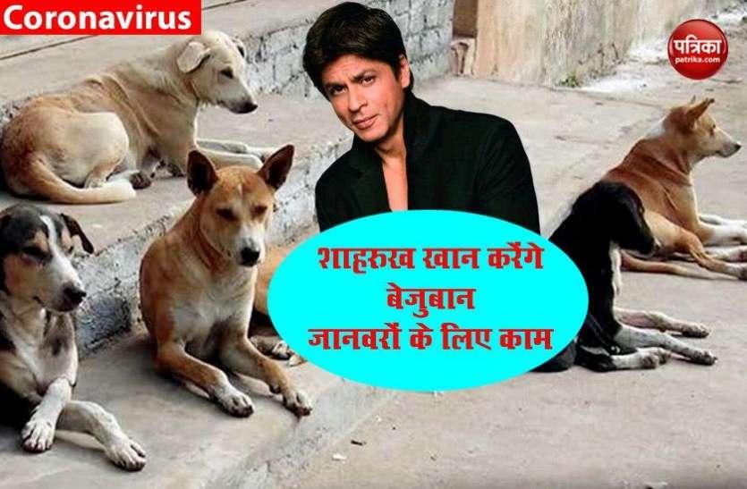 शाहरुख खान के एक दान करने के बाद दूसरे बड़े दान की अनोखी पहल- बेजुबान जानवरों के लिए करेंगे ये काम..
