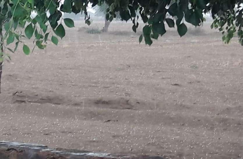 नहरी क्षेत्र में बारिश के साथ ओले गिरे, स्वर्णनगरी में मौसम हुआ सुहावना