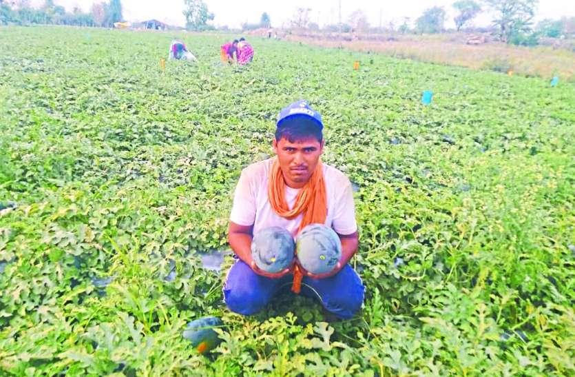 Lockdown: उत्पादन भरपूर, फिर क्यों आर्थिक संकट से जूझ रहे किसान