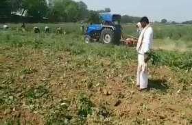 लॉकडाउन से परेशान किसान ने खेतों में खड़ी फसल पर चलवा दिया ट्रैक्टर, वीडियो में सुनें किसान की आपबीती