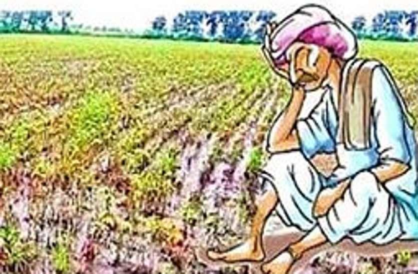 कोरोना काल में किसान पर दोहरी मार, उपज की तुलाई के लिए मांगे पैसे