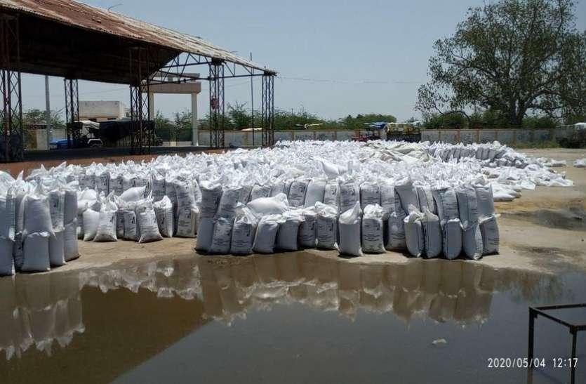 मंडी परिसर में भरा बारिश का पानी, भीगे सैकड़ों गेहूं के बोरे