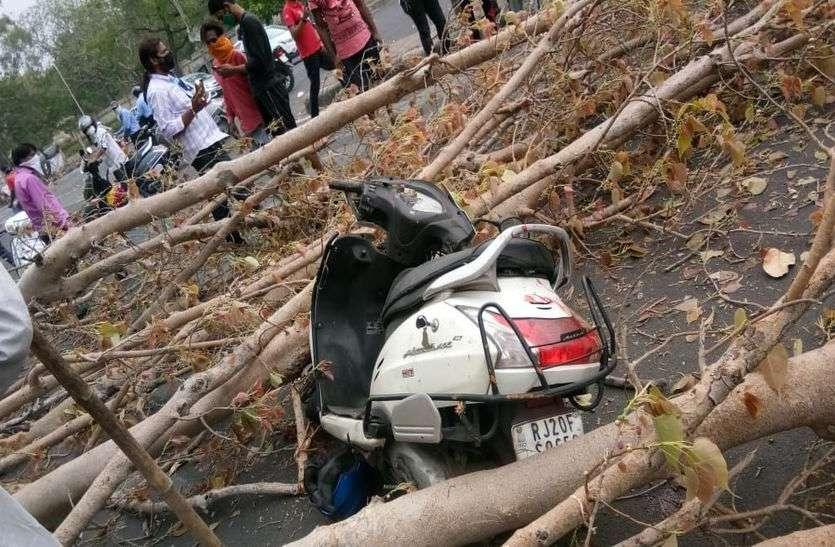 कोटा में हादसा : तेज आंधी में पेड़ मौत बन कर टूटा, कपड़ा व्यापारी की गई जान