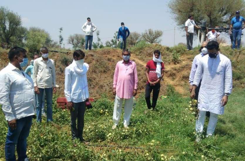 ओलावृष्टि से 700 हैक्टेयर में सब्जियां चौपट, सांसद ने मुख्यमंत्री से की बात