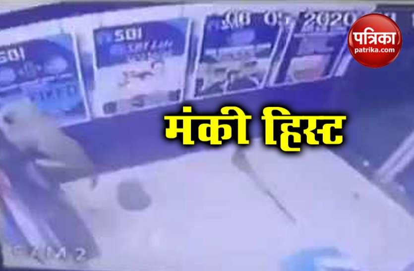 बंदर ने दिनदहाड़े की ATM लूटने की कोशिश, वीडियो देख दंग हुए लोग