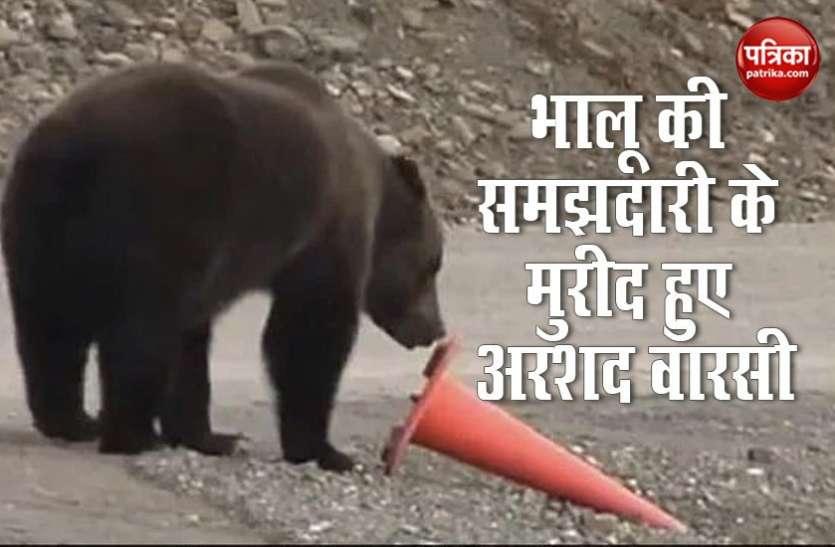 भालू की समझदारी के कायल हुए अरशद वारसी, बोले-ये इंसान से ज्यादा समझदार...देखें वायरल वीडियो