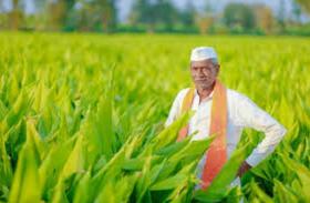 किसानों को मिलेगी राहत, 2 हजार करोड़ रुपए का फसली ऋण देगी उत्तराखंड सरकार