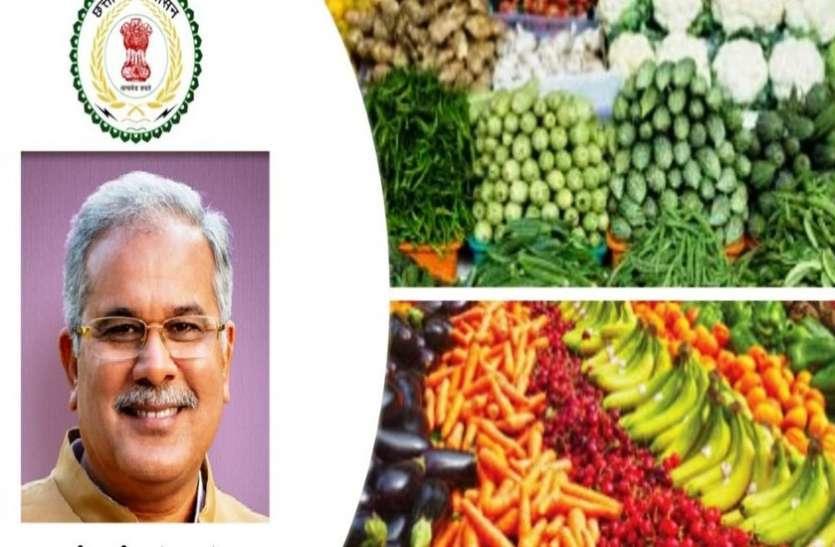 प्रदेश के 6 हजार लोगों ने खरीदी सीजी हॉट से फल, सब्जी और दूध