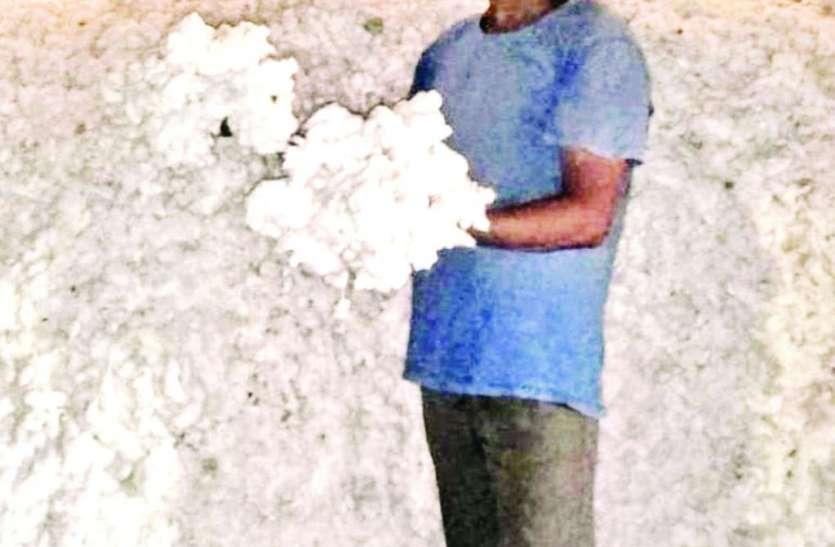 कपास के बंपर उत्पादन के बाद भी किसान निराश, मंडियां बंद होने से नहीं मिल रहा उचित दाम
