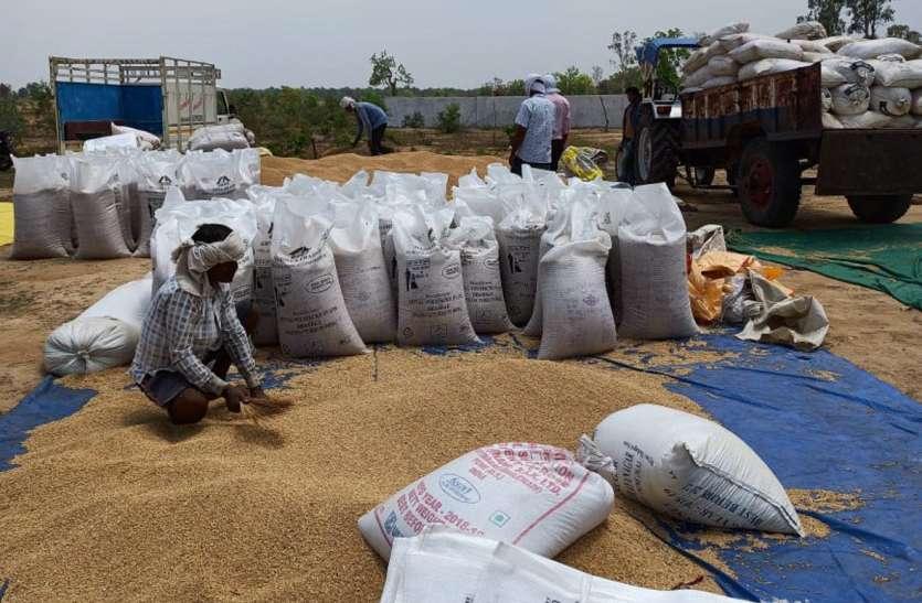 गेहूं उपार्जन हेतु किसानों को भेजे जाने वाले एसएमएस की दैनिक मानीटरिंग करें