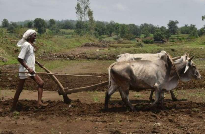 'किसानों के जीवन में क्रांतिकारी बदलाव लाएगा राहत पैकेज, 55 लाख लोगों को मिलेगा रोजगार'