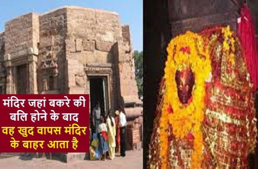 अदभुत् मंदिर : जहां बलि चढ़ाने के बाद बकरा दोबारा हो जाता है ज़िंदा!