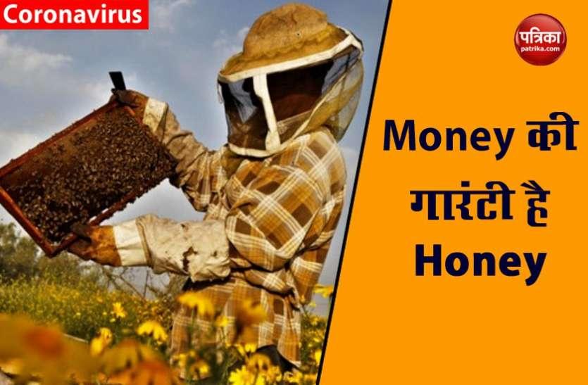 शहद उत्पादन  ( HONEY BUSINESS ) के लिए मोदी सरकार देगी मदद, हर महीनें कर सकते हैं 1 लाख की कमाई