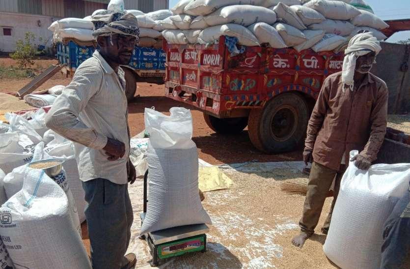 कागजी प्रक्रिया में फंसी उपज की तौल, जिले में दस हजार किसानों को दोबारा मैसेज का इंतजार