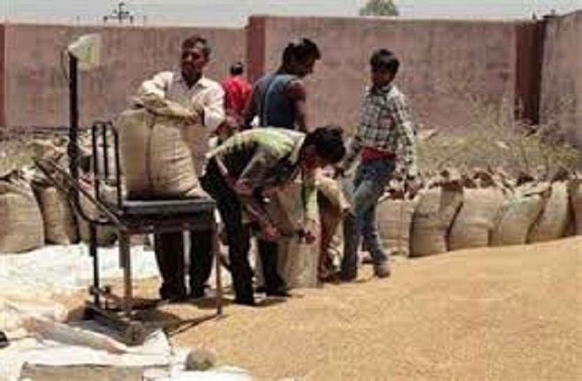 मध्यप्रदेश में गेहूँ का ऑल टाइम रिकार्ड उपार्जन