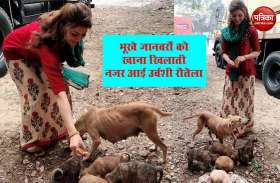 Urvashi Rautela ने लॉकडाउन के बीच भूखे बेसहारा जानवरों को खिलाया खाना, दी मानवता की मिसाल