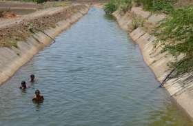 canal - नहरों में छोड़ा पानी, सिंचाई से जगी उम्दा खेती की आस