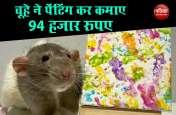 चूहे ने दिखाया कमाल का हुनर, पेंटिंग कर कमा लिए 94 हजार रुपए