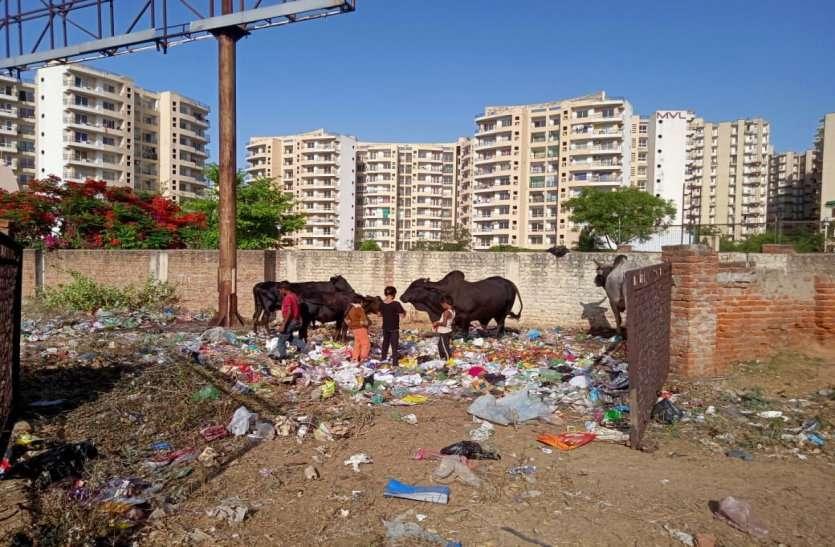 अंकल! भूख लग रही है खाना ढूंढ रहे हैं, उठा लेने दो प्लीज, प्रदेश में सबसे ज्यादा टैक्स देने वाले भिवाड़ी शहर की यह दुखद तस्वीर