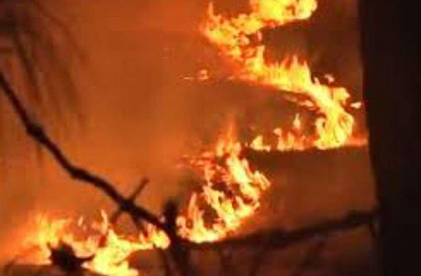 सोलर पावर प्लांट के पास जंगल में भड़की आग, नहीं पहुंचा वन विभाग का अमला