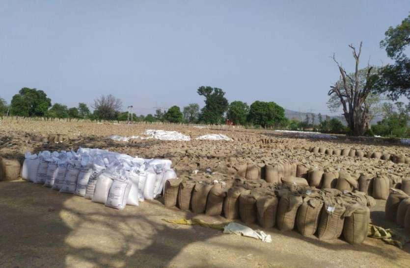 किसानों की 546 करोड़ की राशि अटकी, परिवहन की सुस्त रफ्तार बनी समस्या