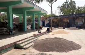 प्रवासी श्रमिकों के जाने से कृषि उपज मण्डी देवल में काम प्रभावित
